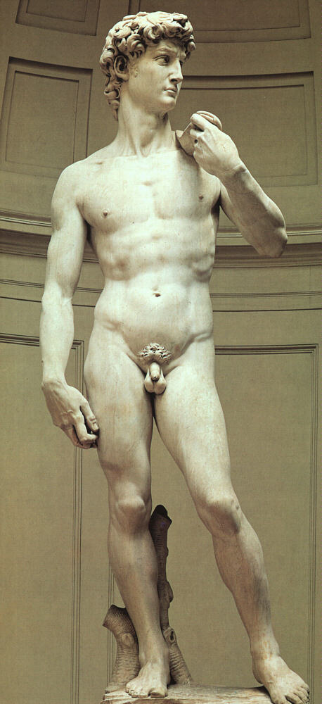 How is bernini's david different from sculptures by michelangelo and donatello on the same subject