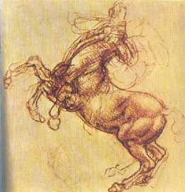 leonardo-rearing-horse